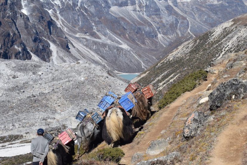From Lobuche to Dingboche, Lobuche, Everest Region, EBC Trek, Himalayas, Mountains, Altitude sickness, CHAPTERTRAVEL