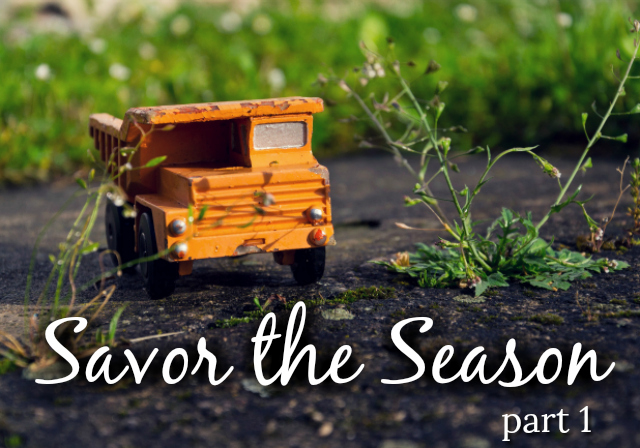 Savor the Season- Part 1
