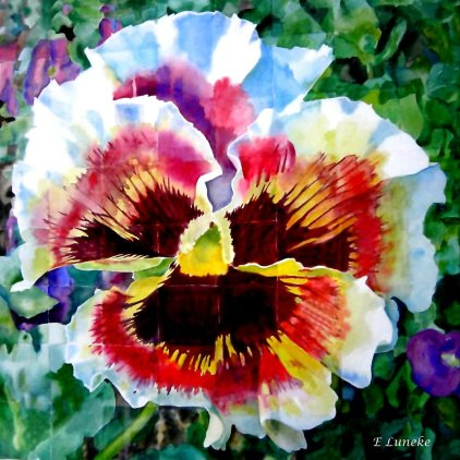 Pansy Cubed (Watercolor)