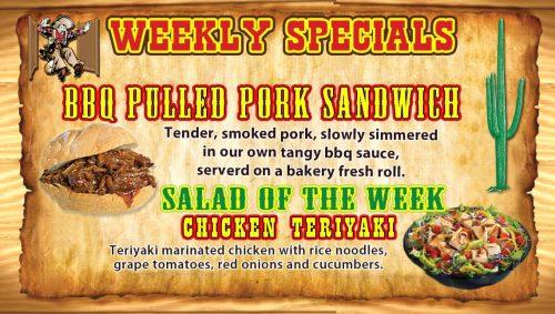 TV-Grill-WK14-BBQ-PulledPork-Teriyaki-Chicken