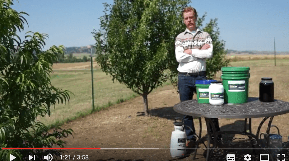 soil d tox - Video: Activated Charcoal for Soil Detox