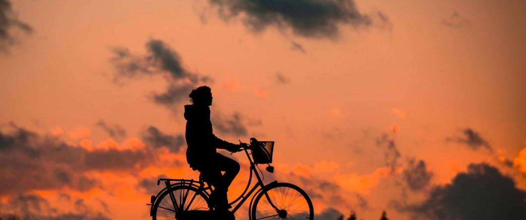 sunset on bike - Toxins: Does Charcoal remove toxins at cellular level?