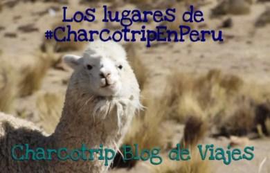 Las alpacas que vimos en Peru