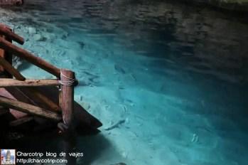 agua-cenote-cahksikin