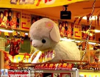 La Alpaca en la entrada de la Taito Station... kawaiiiiiiiiii