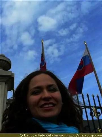 Con las banderas