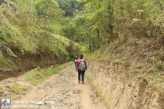 caminando-cocora
