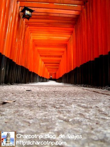Cuantos torii