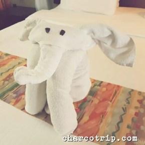 Elefante Sarova Shaba