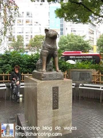 La estatua de Hachiko,con su orejita caida que linda