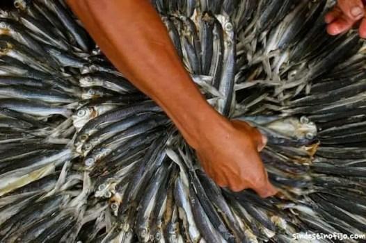 Pescados filipinos por Sin destino fijo