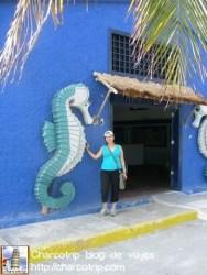 Entrada acuario tortugranja Isla Mujeres