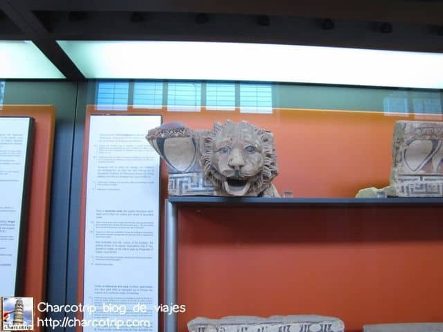 León en vitrina
