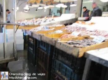 mercado-pescado-atenas2
