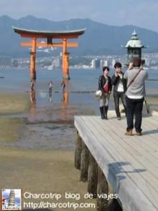 Aquí unos turistas tomándose foto con el torii... como lo haríamos nosotros justo unos segundos despues