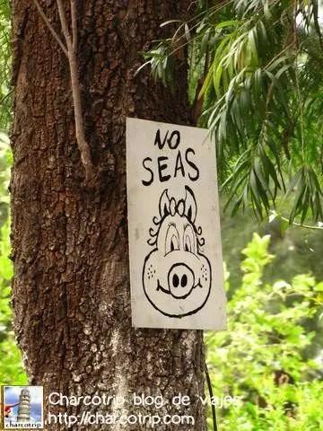 no-seas-cochino