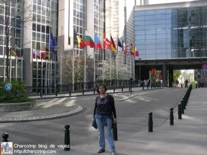 parlamento-bruselas-banderas