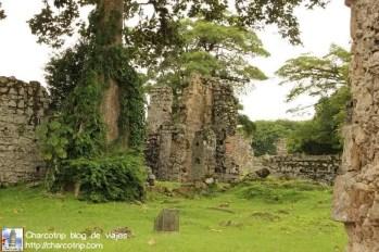 ruinas-panama-viejo