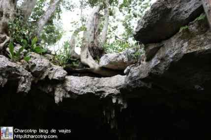 suelo-cenote-cahksikin