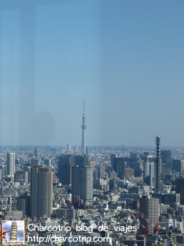 Se ve a lo lejos la Tokio SkyTree
