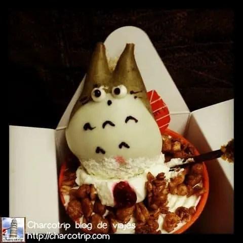 Nos comimos a Totoro y ademas estaba rico