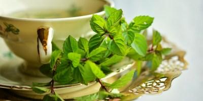 Diarrhoea Tea
