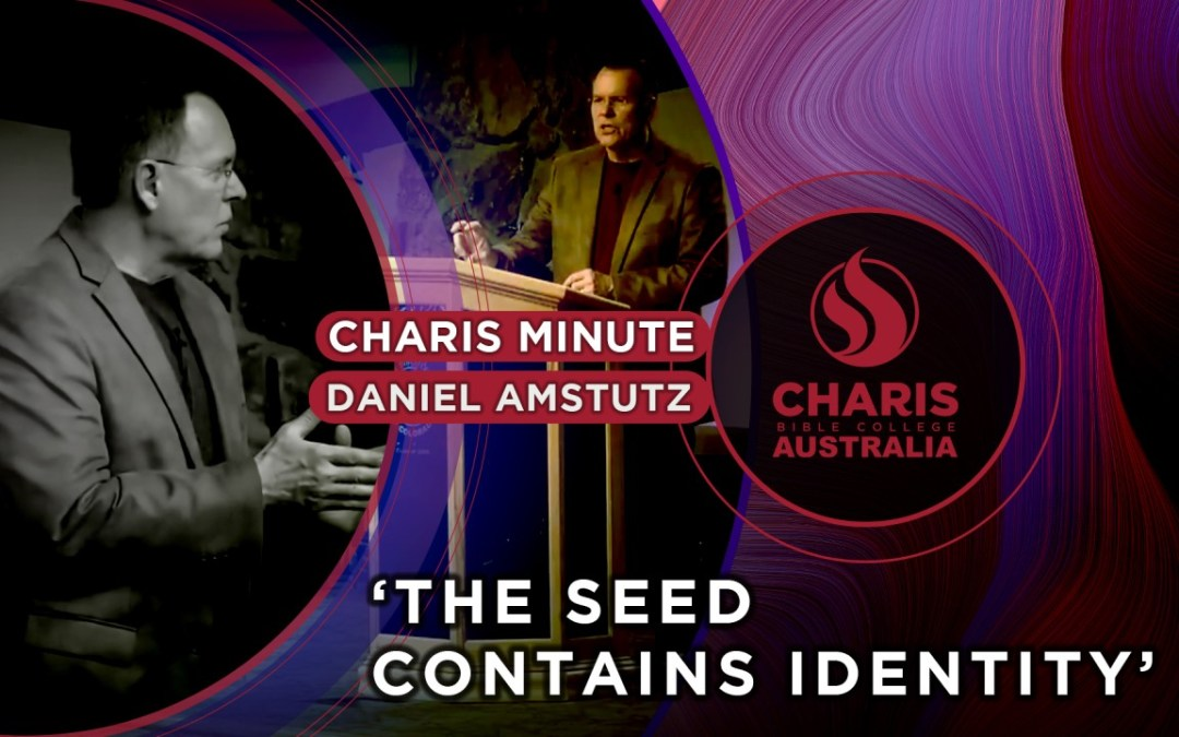 The Seed Contains Identity