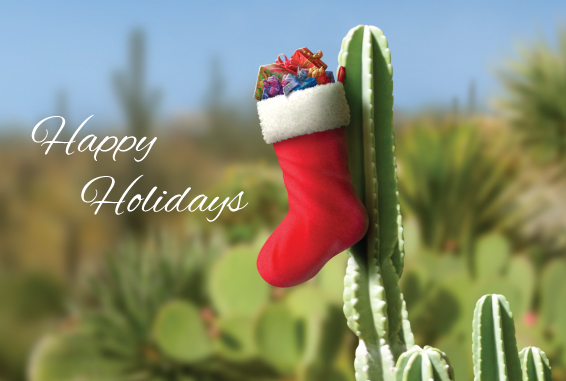 christmas-greeting-card-cactus-stocking-by-alan-giana.jpg