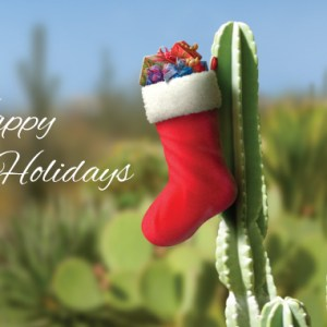 christmas-greeting-card-cactus-stocking-by-alan-giana.jpg