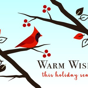 christmas-greeting-card-cardinal-2-by-chelsea-mcfadden.jpg