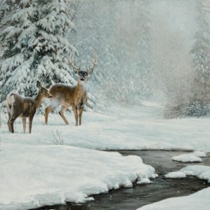 christmas-greeting-card-deer-by-d.r.-laird.jpg