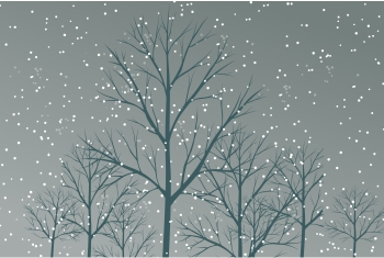 christmas-greeting-card-first-snow-fall-by-house.jpg