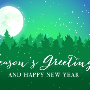 christmas-greeting-card-moonlit-night-by-chelsea-mcfadden.jpg