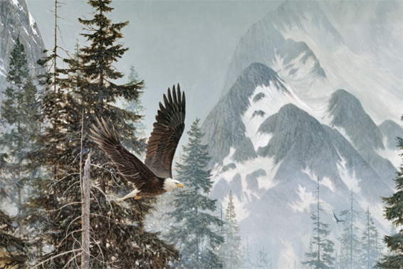 greeting-card-eagle-by-d.r.-laird.jpg