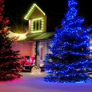 Magic Holiday Eve