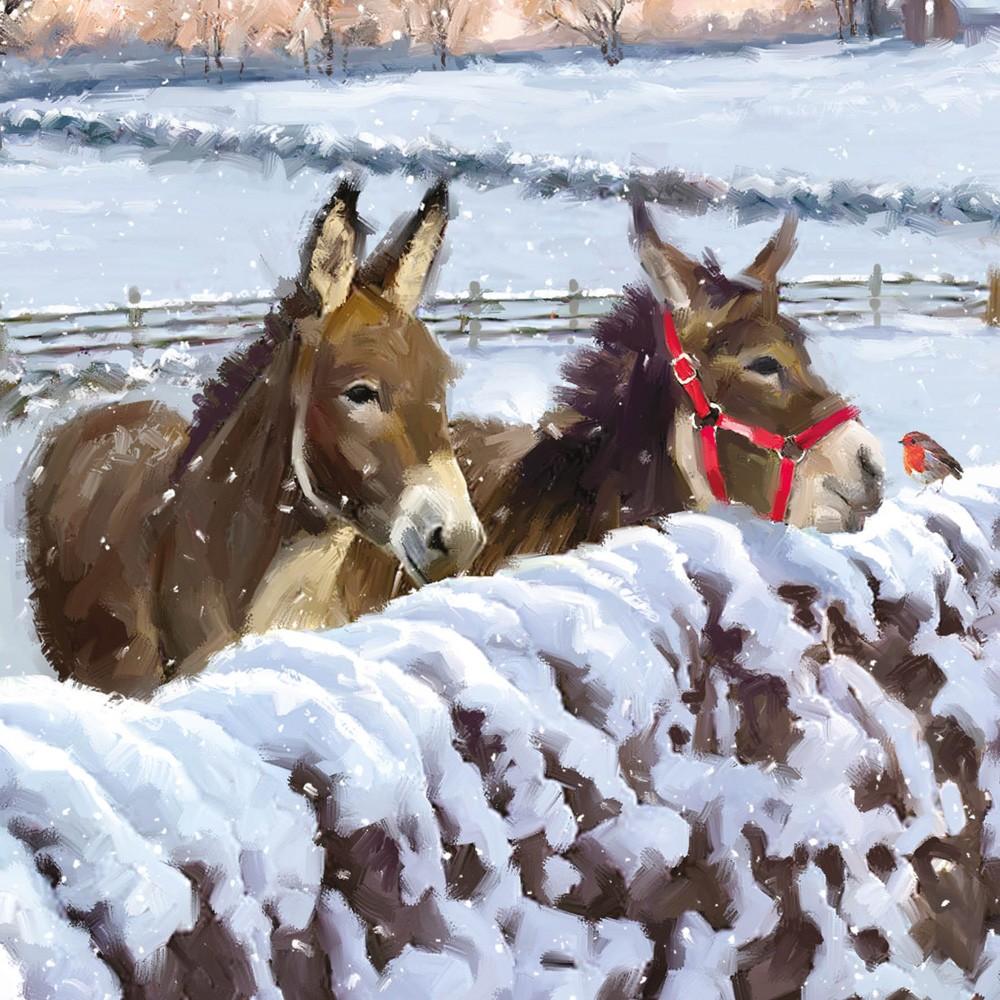 Companions Christmas Card Charity Cards