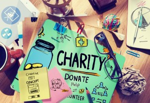 Donor management software