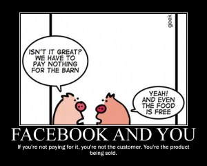 Facebook and You Pigs