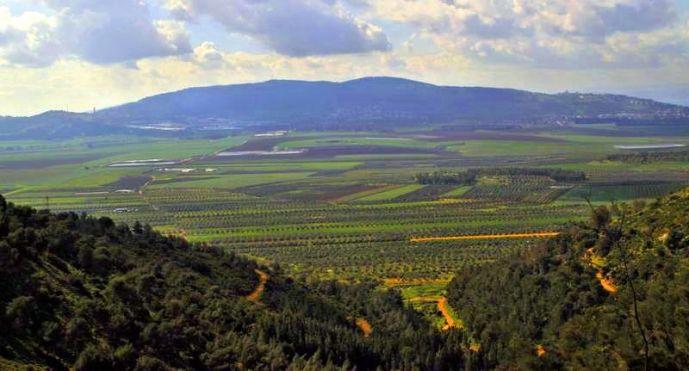 Jezreel Valley verdant in the spring.