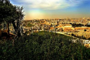 Mount Zion in the distance as viewed from the Mount of Olives. © Charles E. McCracken Ministries Archives.