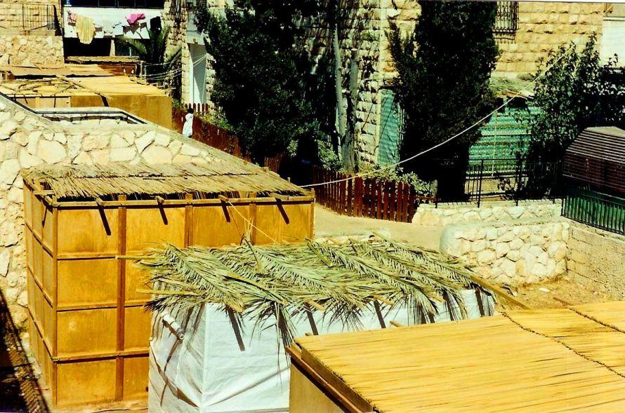 sukkah_roofs_t