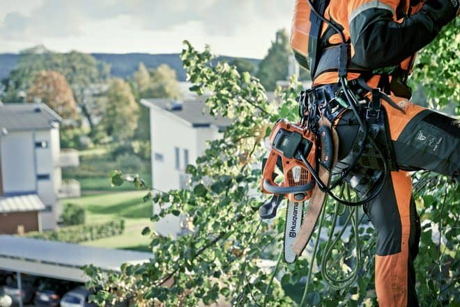 Arborist with battery top handle chainsaw - T536Li XP - attached to belt while climbing
