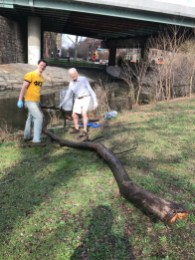 Clearing a big branch