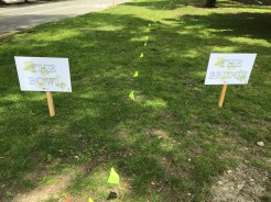 Signs for the Bowl and the Bridge Area