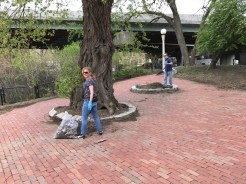 Cleaning up Charlesgate Park