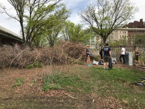 Collecting trash in Charlesgate Park
