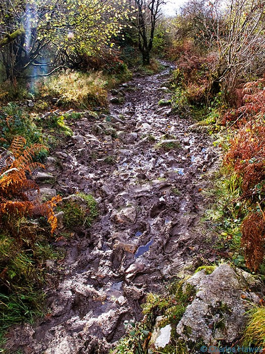 Muddy paths on walk near Ysradfellte, Powys, wales. Photograph by Charles hawes. Walking in Wales.