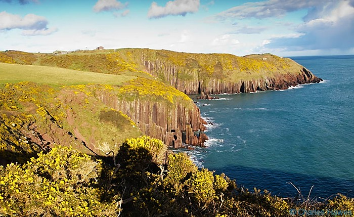 Vertical rock strata in Cliffs near Manorbier , The Wales Coast Path, Pembrokeshire. Image by Charles Hawes
