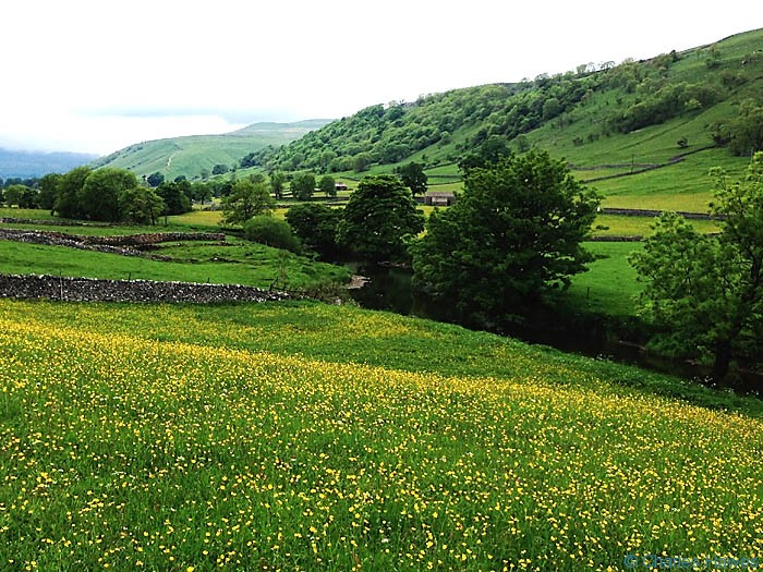 View of theThe  Wharf taken from The Dales way, North Yorkshire, photographed by Charles Hawes