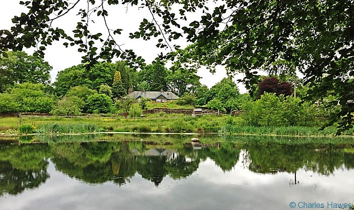 Pond at Home farm on The Dales way, Cumbria, photographed by Charles Hawes